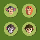 Set of icons with monkeys Stock Photography
