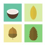 Set of icons nuts. Vector elements for design. Set of icons nuts in flat style. Vector elements for design. Pine nuts, coconut, acorn, almond stock illustration