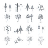 Set of icons pine and deciduous trees. Set of thin line icons pine and deciduous trees stock illustration