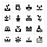Set icons of seed and seedling Stock Image