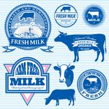 Set of icons on the theme of cow's milk. Set of vector icons on the theme of cow's milk Stock Photo