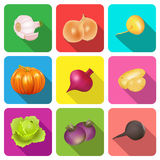 Set of icons on a theme vegetables. Illustration set of icons on a theme vegetables Stock Images