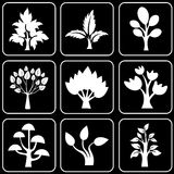 Set of icons (trees) Royalty Free Stock Image