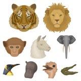 A set of icons of wild animals  Stock Photo