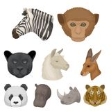 A set of icons of wild animals.  Royalty Free Stock Image