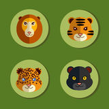 Set of icons with wild animals. Big cats Stock Photos