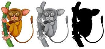 Set if tarsier character. Illustration royalty free illustration
