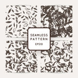 Set of ik feather seamless patterns. Hand drawn doodle vector backgrounds. Royalty Free Stock Photography