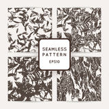 Set of ik feather seamless patterns. Hand drawn doodle vector backgrounds. Stock Photography
