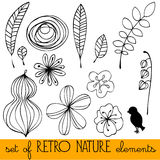 Set of illustrated retro nature elements Stock Photography