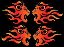 Set illustration infuriated lion. In fire on black Stock Photo