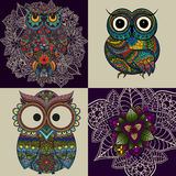 Set from illustration of ornamental owls. Set of Bird illustrated in tribal. Isolated on white Royalty Free Stock Photography