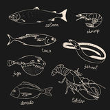 Set illustration of seafood, fish on a black background. For the menu of restaurants, cards, books, wrapping paper Royalty Free Stock Photo