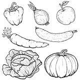 Set illustration of vegetables collection in line art Stock Photography