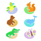 Set of illustrations with animals parrot, squirrel, bear, dolphin, crocodile, butterfly. Royalty Free Stock Photos