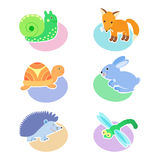 Set of illustrations with animals, snail, Fox, turtle, rabbit, hedgehog, dragonfly. Icon, avatar, sticker. Royalty Free Stock Photography