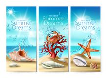 Set of illustrations, banners of a summer sandy beach with seashells, pebbles, starfish, crab and coral. Against the turquoise sky and the sea. Excellent Royalty Free Stock Photo