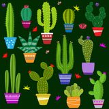 Set of illustrations of cute cactus. And succulents in pots and with plants. can be used for cards, invitations or like sticker Stock Photography