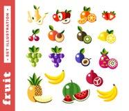 Set illustrations of fresh fruit Royalty Free Stock Photo