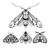 Set of illustrations with mystical hand drawn moths Stock Image