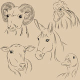 Set of illustrations pets. Farm. Agronomy. Monochrome. Royalty Free Stock Photos