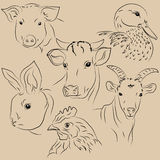 Set of illustrations pets. Farm Stock Photography