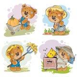 Set of illustrations of vector of teddy bear beekeeper, farmer. Stock Photography
