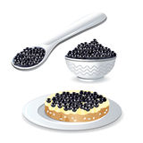 The set of images of black sturgeon caviar. Set of  images of black caviar of sturgeon fishes Stock Image