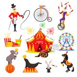 A set of images on a circus theme. Circus performances of trained animals, a trainer and a clown Stock Images