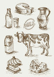 Set of images of dairy products. Stock Images