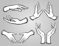 Set of images of human hands in different poses. vector illustration