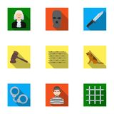 Set of images about the prison and prisoners. Surveillance of thieves, court, crime and punishment.Prison icon in set. Collection on flat style vector symbol Royalty Free Stock Images