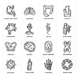 Set of Immune System, Hand Bones, Big Cellule, Human Fingerprint, Hip, Lips, Lymphonodus, Large Intestine, Stomach with Liquids ic. Set Of 16 simple  icons such Royalty Free Stock Image