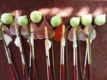 Set of incense stick, candle, lotus flower Royalty Free Stock Image