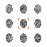 Set of individual fingerprints for personal identification. Vector illustrations Royalty Free Stock Images