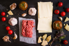 Set of ingredients for italian lasagne Stock Image