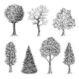 Set of ink hand drawn black and white trees Stock Photo