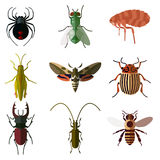 Set of insect flat icons2 Royalty Free Stock Images