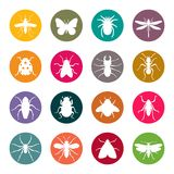 Set of insect silhouettes Royalty Free Stock Photo