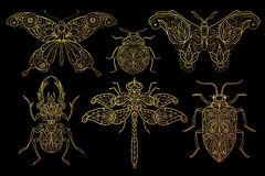 Set of insects butterflies, dragonflies, beetles. Insects. Butterflies, dragonflies, beetles. Set of vector stylized image. Gold foil print on black background Royalty Free Illustration