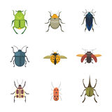 Set of insects flat style vector design icons. Collection  nature beetle and zoology cartoon illustration Royalty Free Stock Photography