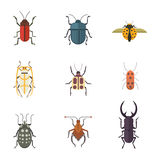 Set of insects flat style vector design icons. Collection nature beetle and zoology cartoon illustration Stock Photo