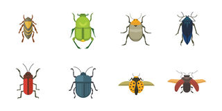 Set of insects flat style vector design icons. Collection nature beetle and zoology cartoon illustration Royalty Free Stock Photos