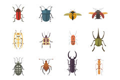 Set of insects flat style vector design icons. Collection nature beetle and zoology cartoon illustration. Bug icon Royalty Free Stock Images