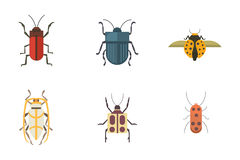 Set of insects flat style vector design icons. Collection nature beetle and zoology cartoon illustration. Bug icon Stock Photos