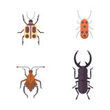 Set of insects flat style vector design icons. Collection nature beetle and zoology cartoon illustration. Bug icon Stock Images