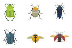 Set of insects flat style vector design icons. Collection nature beetle and zoology cartoon illustration. Bug icon Stock Photography