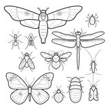 Set insects. Royalty Free Stock Photos