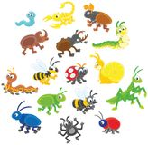 Set of insects. Vector illustrations of funny insects drawn in cartoon style including several species Stock Photos