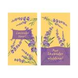Set invitation cards with flower frame Lavender Stock Image